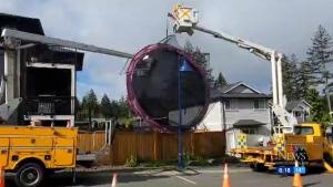 Overnight gusts send Langford trampoline flying
