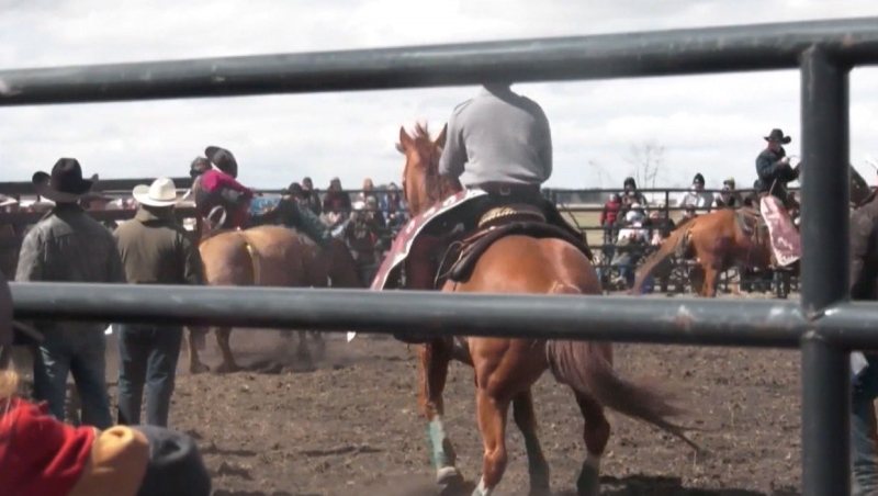 """Alberta Health Services has said a positive case of COVID-19, directly connected to the """"No More Lockdowns"""" rodeo near Bowden, Alta., has been found."""