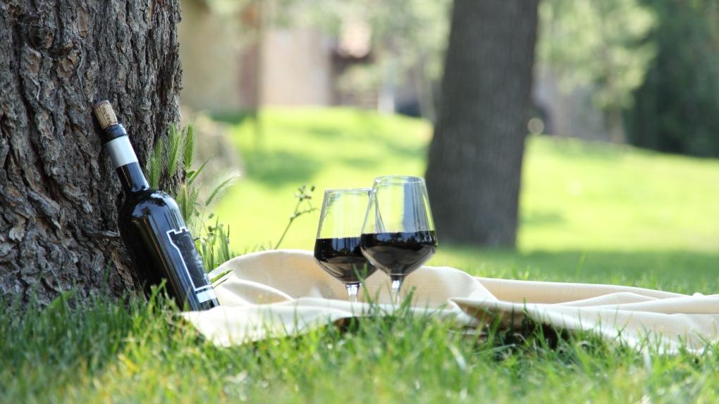 Drinking parks wine