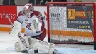 Michael Simpson from London, Ont. is a goalie for the Peterborough Petes in the OHL.  (Source Peterborough Petes)
