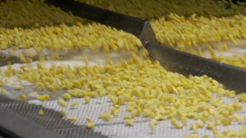Corn is packaged at the Bonduelle plant in Strathroy, Ont.