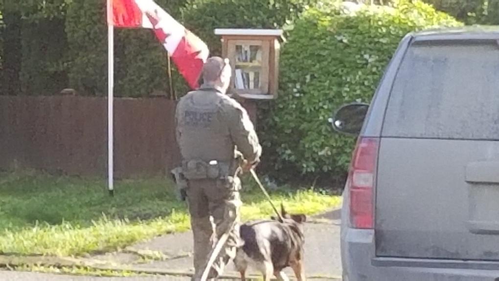 oak bay arrest