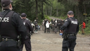 Old-growth logging protests and arrests continue