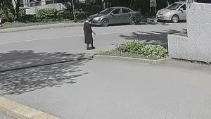 Burnaby RCMP say they're looking for a suspect in an attack on a senior woman. (Burnaby RCMP handout)
