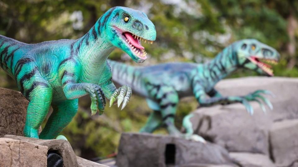 Dinosaurs Awakened, Calgary Zoo