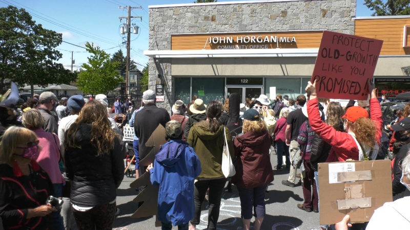Hundreds of people protested in front of the office of the B.C. Premier John Horgan, calling for an end to old-growth logging.