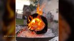 Nothing beats a backyard campfire! (June & Dan Roy/CTV Viewers)
