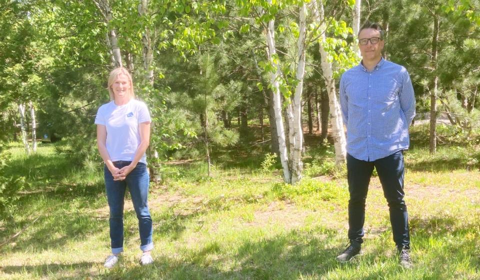 Kivi tree planting