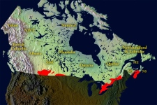While the I. pacificus tick was found in populous areas of B.C., this 2000 map shows the spread of the I. scapularis tick in the rest of Canada.