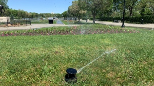 Sprinklers on the Saskatchewan Legislative building grounds keeping the grass watered on a 30+ degree day in June 2021. (Colton Wiens/CTV News)