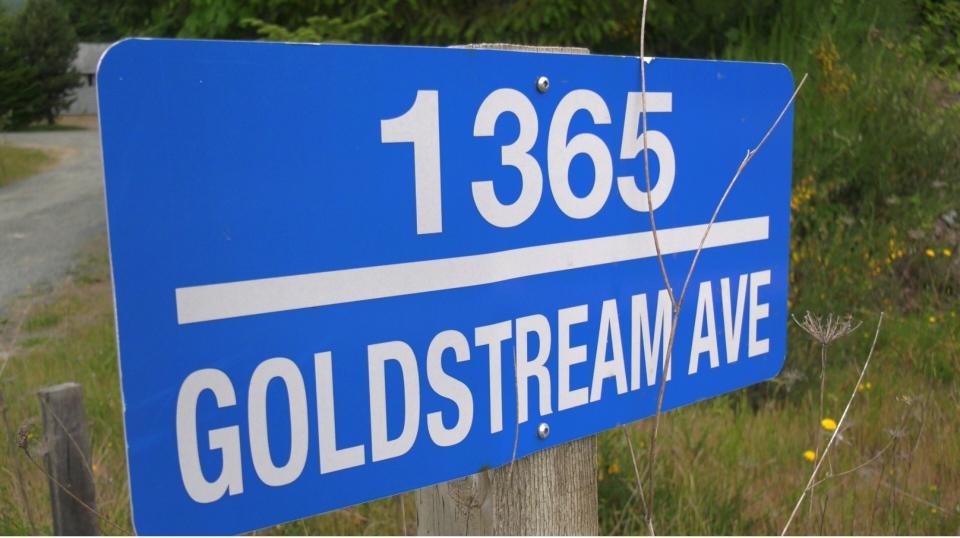 Goldstream Avenue property
