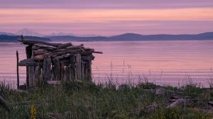 June 7, 2021: Island View Beach. (Photo: Teresa Szmuniewski)