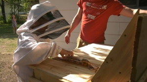 Beekeepers in Yorkton pleased with new rules