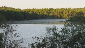 A popular lake in the Halifax area remains off-limits because of an ongoing water quality issue.