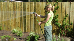 Gardening expert Carson Arthur offers tips for watering your garden during this dry spell. (Photo courtesy: Carson Arthur)