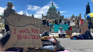 Seniors are seen protesting old-growth logging outside of the B.C. legislature on June 10, 2021: (CTV News)