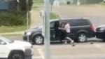 Traffic assault