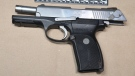Waterloo regional police located a loaded handgun in a park on Manchester Road on June 10, 2021. (Supplied by WRPS)
