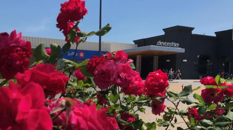Devonshire Mall in Windsor, Ont., on Friday, June 11, 2021. (Michelle Maluske / CTV Windsor)