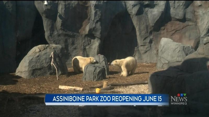 zoo reopen
