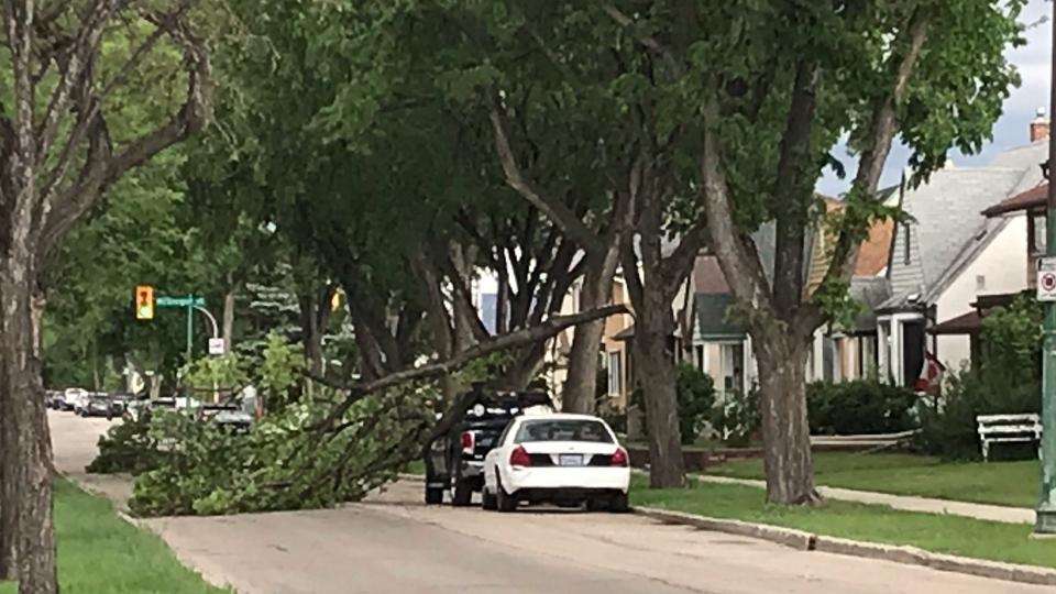High wind damage Winnipeg