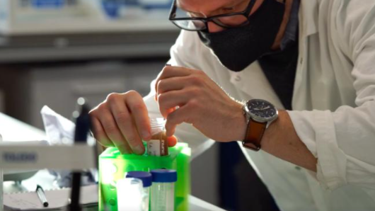 Researchers at the University of Cambridge in the U.K. have created a plant-based, sustainable, scalable material that could replace single-use plastics in many consumer products.(Xampla)