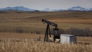 A de-commissioned pumpjack is shown at a well head on an oil and gas installation near Cremona, Alta., Saturday, Oct. 29, 2016. Landowners and legal experts are criticizing Alberta's hastily passed new legislation intended to help clean up the province's huge stockpile of abandoned energy facilities.THE CANADIAN PRESS/Jeff McIntosh