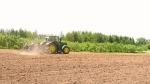 Dry weather leaves farmers scrambling