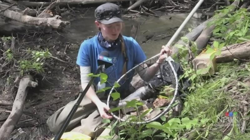 Junction Creek group meets to clear waterway