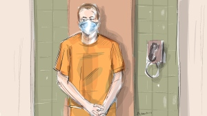 In this artist's sketch, Nathaniel Veltman makes a video court appearance in London, Ont., Thursday, June 10, 2021. (THE CANADIAN PRESS/Alexandra Newbould)