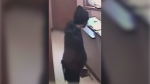 Leduc RCMP want help identifying man involved in armed robbery at the Super Car and RV Wash on June 13. Credit: RCMP