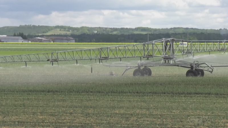 Simcoe County farmers irrigation system (Rob Cooper/CTV)