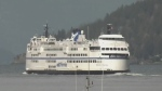 BC Ferries website crashes as travel ban ends