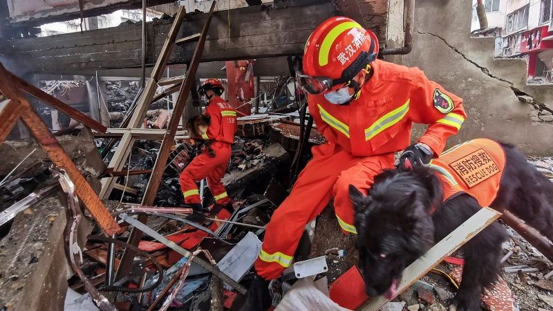 In this photo released by Xinhua News Agency, rescue workers using sniffer dogs to search for survivors in the aftermath of a gas explosion in Shiyan city in central China's Hubei Province on Sunday, June 13, 2021. (Xiao Yijiu/Xinhua via AP)