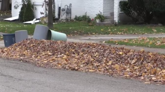 Councillors in Waterloo voted Monday night to keep the city's loose leaf collection program in place.
