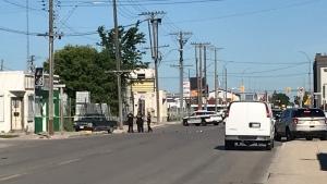 Police respond to a hit and run collision involving a pedestrian on June 15, 2021. (CTV News Photo Owen Swinn)