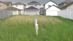 Residents of the north Edmonton neighbourhood of Lago Lindo may soon be rid of a painful reminder of a tragic event that took place 11 years ago. (CTV News Edmonton)