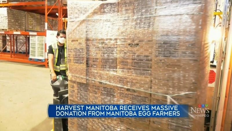Egg farmers help Manitoba Harvest