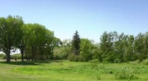Saskatoon weather June 16