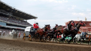 The 2021 Calgary Stampede will not include the annual Rangeland Derby but chuckwagon racing fans can get their fix at the Battle of the Foothills in High River in mid-July. (File: THE CANADIAN PRESS/Jeff McIntosh)