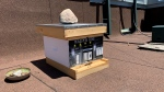 A mini version of the Walper Hotel used for a rooftop beehive (Stephanie Villella / CTV News Kitchener)