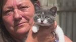 Kitten abandoned in donation bin recovering