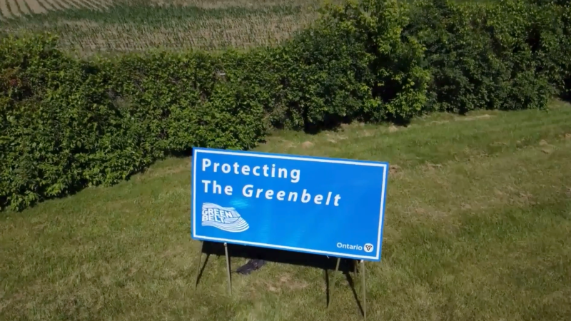 The Ontario government put an end to years of controversy over the wetlands in Georgina's North Gwillimbury forest by announcing plans to add 360 hectares of privately-owned land to the Lake Simcoe Region Conservation Authority on Wed. June 16, 2021 (Katelyn Wilson/CTV News)