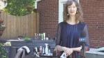 Concerns about 'underground' hair cuts