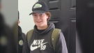Nate Greentree, 15, was last seen leaving his home in Sagewood on Tuesday afternoon. (Supplied)