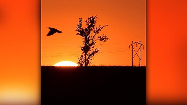 Beautiful sunset in Morris Manitoba. Photo by Josh Keck.