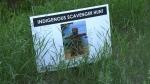 Scavenger hunt for Indigenous Peoples Day