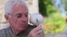 Xavier Bouget, a retiree from the northwest French region of Brittany, befriended Blanchon when she was a chick and now she tags along with him everywhere.
