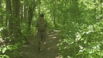 Fight to save forest from being paved over