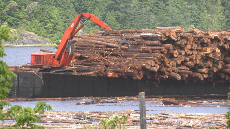 San Group recently announced an investment of nearly $100 million into their Port Alberni facilities earlier this month, and they're now contemplating an expansion into the Northwest. (Photo source: CTV Vancouver Island).